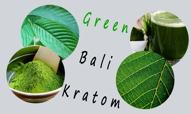 green bali kratom reviews