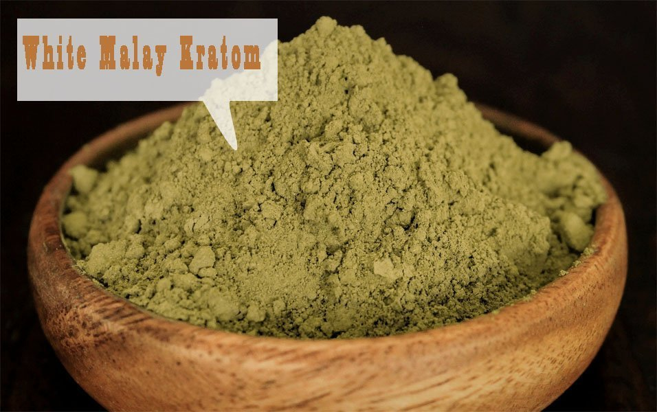 White Malay Kratom Effects