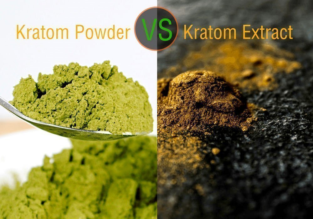 Kratom Powder Vs. Kratom Extract