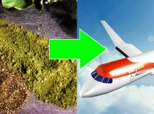 Can I take kratom on a plane?