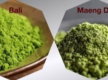 Bali Kratom VS. Maeng Da: A Detailed Comparison