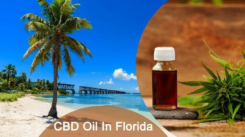 Legal CBD Oil in Florida